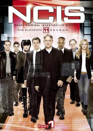 NICS11