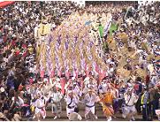 天水たちが熱く舞う四国・徳島の阿波踊り、配信-NHKオンデマンド