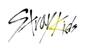 JYP 新星発掘サバイバル番組「Stray Kids」12/22Mnetで日本初放送決定!関連動画