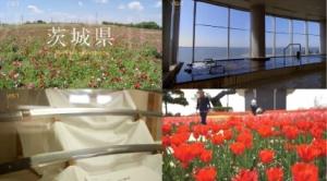 茨城県、県内44カ所のローカルな魅力を凝縮した海外向け動画公開!