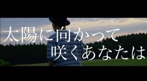NOBU、明日(3/14)生放送歌番組出演&話題曲先行配信!「いま、太陽に向かって咲く花-Remix-」動画公開