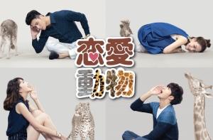 中国で6億人が視聴!?マイク・ハー主演「恋愛動物」、BS11で9/8よりBS初放送!あらすじと予告動画