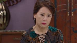 韓国で視聴率49.4%!「たった一人の私の味方」第36-40話あらすじ:スイルが犯した罪を知ったドランだが…WOWOW-予告動画