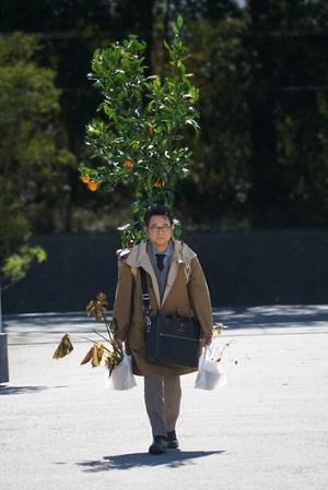 17日「家栽の人」で船越英一郎が人間を愛し、植物を慈しむ変わり者の家裁判事を熱演!あらすじと予告動画