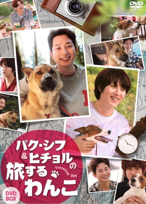 「パク・シフ&ヒチョルの旅するわんこ」DVD-BOX 5/7発売決定!