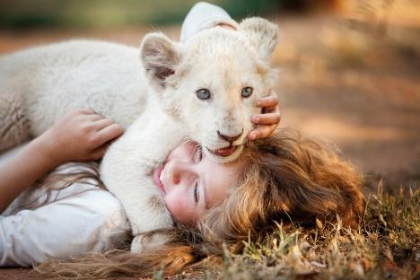 『ミアとホワイトライオン 奇跡の1300日』ミアとライオンが信頼関係を築く衝撃のメイキング映像公開!