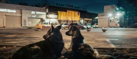 新感覚ドキュメンタリー『犬は歌わない』オンラインイベント開催!メイキング動画と著名人コメントも到着