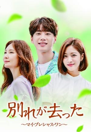 【「別れが去った~マイ・プレシャス・ワン~」を2倍楽しむ】韓国ドラマ、あらすじ、見どころ、韓国での評判など